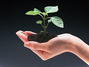 Программа «Инженерно-экологические изыскания»